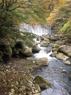 紅葉と滝の写真・画像素材[1004938]