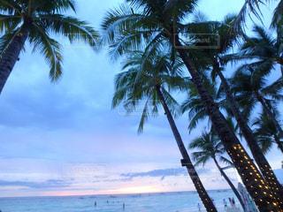 ボラカイ島の夕日の写真・画像素材[1005142]
