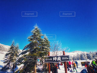 スキー場の写真・画像素材[1005163]