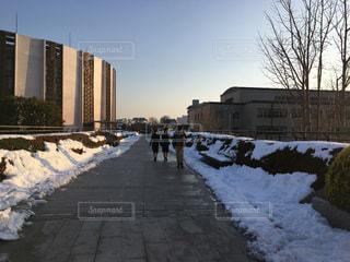雪に覆われた道の写真・画像素材[1005251]