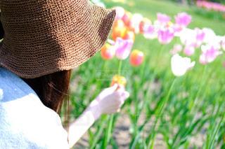 花と人の写真・画像素材[1228710]