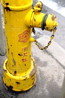 消火栓の写真・画像素材[1269270]