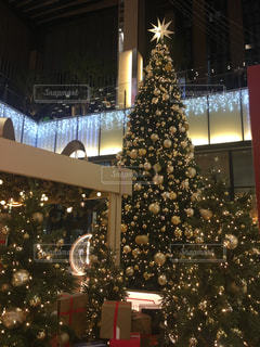 夜ライトアップされたクリスマス ツリーの写真・画像素材[1616311]