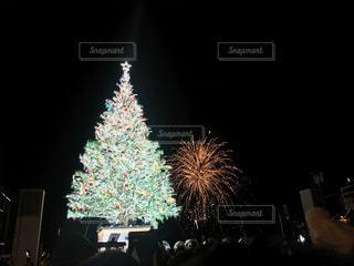 夜ライトアップされたクリスマス ツリーの写真・画像素材[1688846]