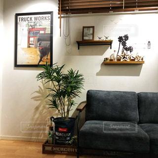 リビング ルームのソファとグリーンの写真・画像素材[1005459]