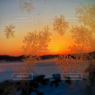 極寒、朝日のお知らせの写真・画像素材[1005463]