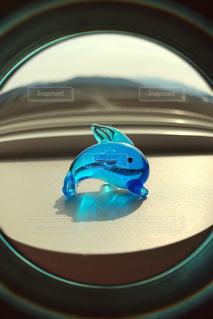 魚眼レンズのアプリで撮影の写真・画像素材[1079430]