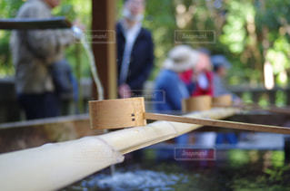 神社の手水舎の写真・画像素材[1184629]