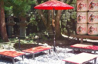 和風庭園と日傘の写真・画像素材[1184634]