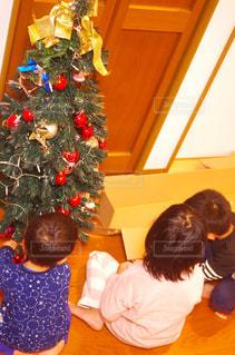 クリスマスツリーの飾り付けをする兄弟の写真・画像素材[1670274]