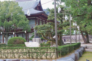 神社の結界の写真・画像素材[1703091]