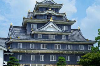 岡山城 天守の写真・画像素材[2402924]