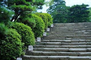 岡山城 石段の写真・画像素材[2402952]