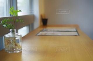 テーブルと観葉植物の写真・画像素材[2648600]
