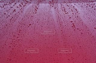自動車 ボディー 撥水の写真・画像素材[2659919]
