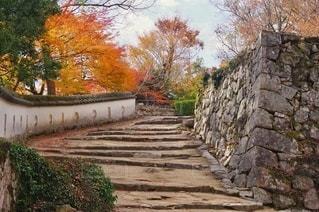 備中松山城 石垣と土塀の写真・画像素材[2787251]