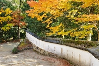 備中松山城 石垣と土塀の写真・画像素材[2787252]