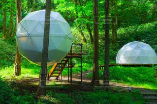 ドーム型テントの写真・画像素材[4389642]