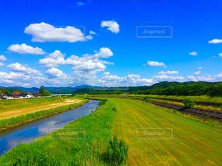 橋の上より。5月の新緑と空の青。の写真・画像素材[1009375]