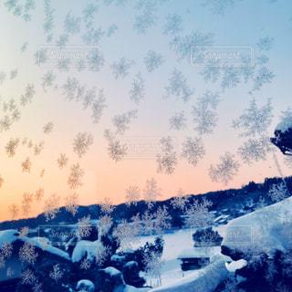 雪の結晶の写真・画像素材[1013573]