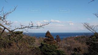 山腹からの海の写真・画像素材[1012529]