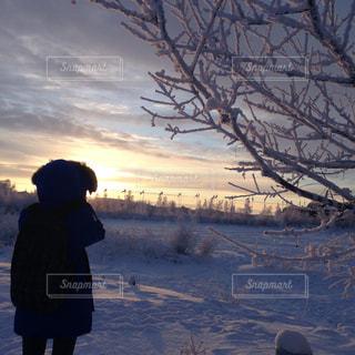 雪の中夕日を見つめる - No.1008513