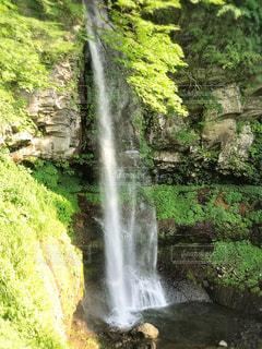 森の中の大きな滝の写真・画像素材[1007160]
