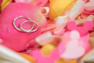 近くにピンクの花のアップの写真・画像素材[1133028]