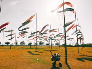 フィールドに凧の飛行の人々 のグループの写真・画像素材[1135829]