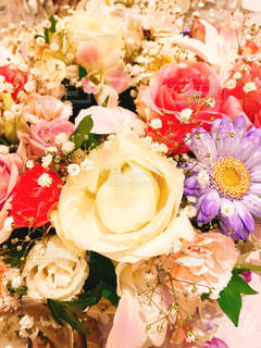 近くの花のアップの写真・画像素材[1210912]
