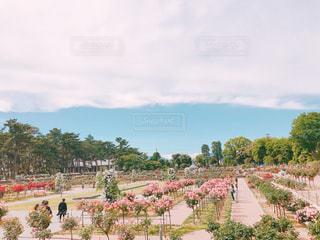 庭の人の群衆の写真・画像素材[2214545]