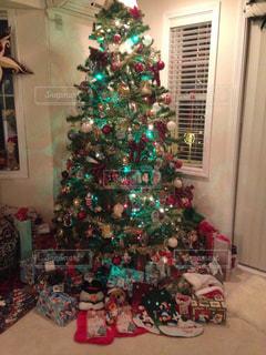 ある年のクリスマス ツリー - No.1007336