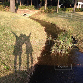 放課後友達と公園でイイ写大会の写真・画像素材[1007526]