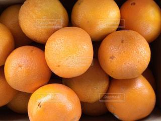 テーブルの上に座ってオレンジの山の写真・画像素材[1011311]