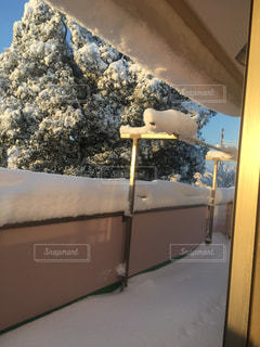 雪で覆われたベランダの写真・画像素材[1008956]