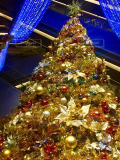 クリスマス ツリーの写真・画像素材[1008557]
