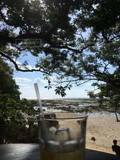 沖縄のカフェのテラス席の写真・画像素材[1008474]