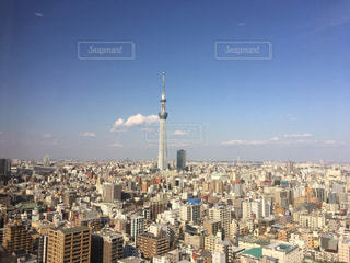 下町にそびえ立つ東京スカイツリーの写真・画像素材[1008806]