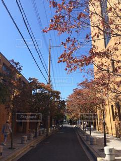街の通りのビュー - No.1010843