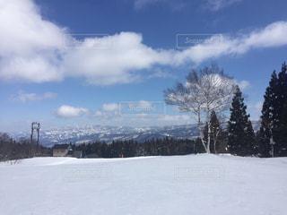 雪に覆われた斜面 - No.1010866