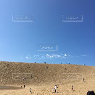 浜辺で凧の飛行の人々 のグループ - No.1010879