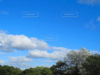 青い空の写真・画像素材[1010979]