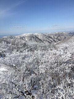 雪に覆われた山 - No.1009739