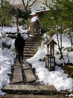 庭を歩く人の写真・画像素材[1010672]