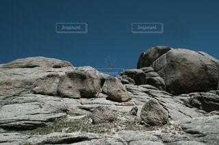 岩山に力強く生える一本の木の写真・画像素材[1010223]