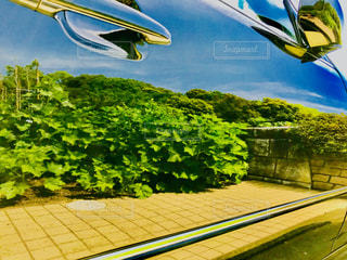 ピカピカの車に写った風景の写真・画像素材[1147409]