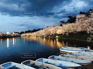 ボート乗り場から夕方の桜の写真・画像素材[1010111]