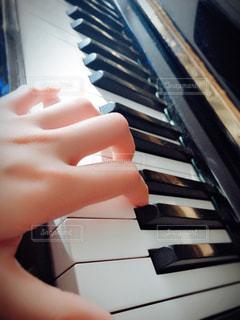 そっと鍵盤に触れての写真・画像素材[1011343]