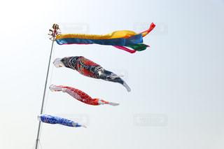 宙を舞う凧の写真・画像素材[1111397]