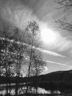モノクロ写真風景の写真・画像素材[1011135]